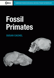 Fossil Primates book cover