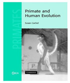 Primate and Human Evolution book cover